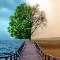 Изменение климата — еще один экзистенциальный кризис для цивилизации — Токаев